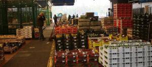 Perishables & Reefers